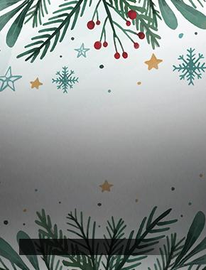 Социальная акция  «Новогодние приключения Гарри Поттера»